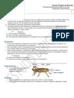 Artrópodes e Equinodermas - Estudo Dirigido