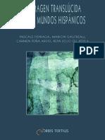 Barcenilla H. La imagen traslúcida..pdf