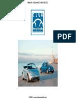 Manual_New_Beetle2_ESP.pdf