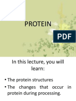 6_PROTEIN
