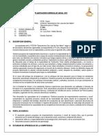 PLANIFICACIÓN CURRICULAR ANUAL 2019.docx