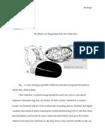 final draft research paper - jenna moening  1