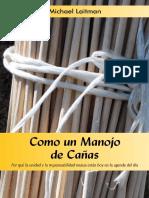 eBook_Spa_como_un_manojo.pdf