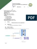 Formato Presentación Informe Biotecnología a (3)