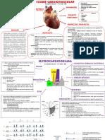 Habilidades Médicas - Osce II - Semiologia