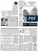 Fanzine Patagonia Sin + Mineras (feb 2019)