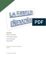 Integrantes de La Familia (Ñemoña)