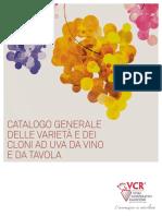 vcr katalog (italian).pdf