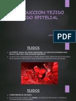 HISTO-1-Teoria-EPITELIO.pptx