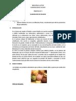 148982083-Elaboracion-de-Helado leches.docx