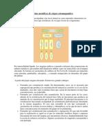 246268374-YACIMIENTOS-ORTOMAGMATICOS.docx