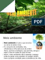 QMA_2_Meio ambiente.PDF