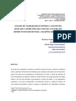 Analise de Viabilidade Economica, Um Estudo Aplicado a Estrutura de Custo Da Cultura Do Dende No Estado Do Para Amazonia Brasil 2010