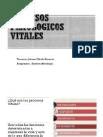 PROCESOS VITALES BASICOS