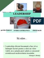 1 OGavrilovici Leadership - Intro