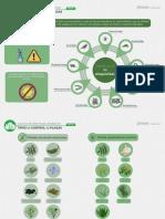 Tipos de Control de Plagas