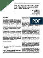 6-APA.pdf