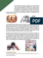 Libro de Atletismo - Carlos Francisco Rivera.pdf