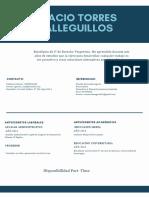 1. Formato Curriculum Vitae (Sugerido)