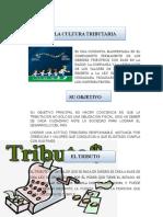 GUIA DIDACTICA COMPLETA PARA IMPRIMIR.docx
