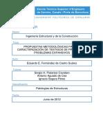 TFM - E. FERNANDEZ DE CASTRO.pdf