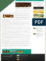 Abelha Brasileira Sem Ferrão Cultiva Fungo Para Sobreviver