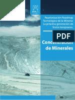 Núcleo Concentración de Minerales (3).pdf