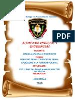 ACPIO.docx
