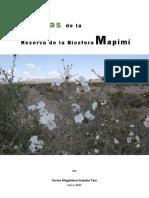 09_guiaplantas2015.pdf