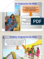 Pueblos Origiunarios de Chile OK