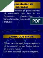 Segmentacion Del Mercado