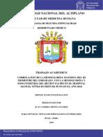 Ortega_Flores_Juan_Andres.pdf