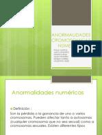 Anormaanlidades Cromosomicas Numericas (Global)