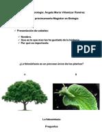 Primer Clase Decimo_fotosintesis