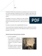 Informe Final Concreto Armado 1