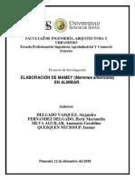 MAMEY-EN-ALMIBAR (2).docx