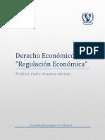 Mi apunte Regulacion Economica 2017-bueno.docx