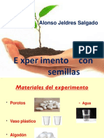 experimento-alonso.ppt