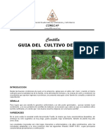 GUIA CULTIVO DE Maiz.pdf