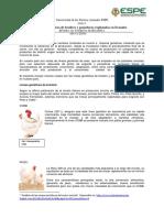 270637188-3-Ensayo-Lineas-Geneticas-Explotadas-en-Ecuador.docx