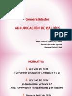 Adjudicación Baldíos Act