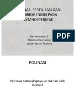Kelompok 17 Polinasi,Fertilisasi Dan Embriogenesis Pada Gymnospermae