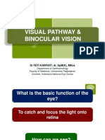 visual pathway Dr FK.ppt