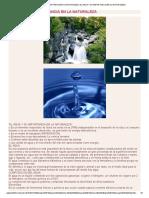 El Agua y Su Importancia en La Naturaleza_ El Agua y Su Importancia en La Naturaleza