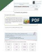GUIA DE FAMILIA DE PALABRAS.doc