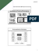 Stoa  controle de qualidade-DV folhas [Modo de Compatibilidade].pdf