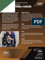 Excel Garantiza Ajuste Forma y Funcion E 2 Desbloqueado