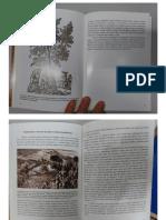 Alfredo Margarido Plantas inesperadas na america.pdf