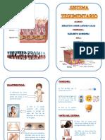 Diptico Para Exposicion (1)