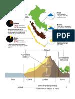 Cómo Son La Viviendas de La Selva Peruana